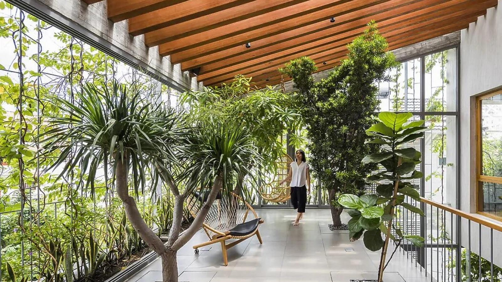 Ngôi nhà tựa như công viên với nhiều cây xanh