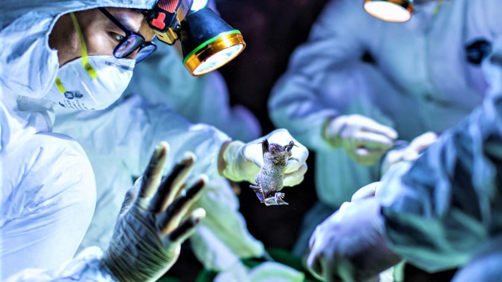 Các nhà khoa học Nga cảnh báo về khả năng bùng phát dịch bệnh mới