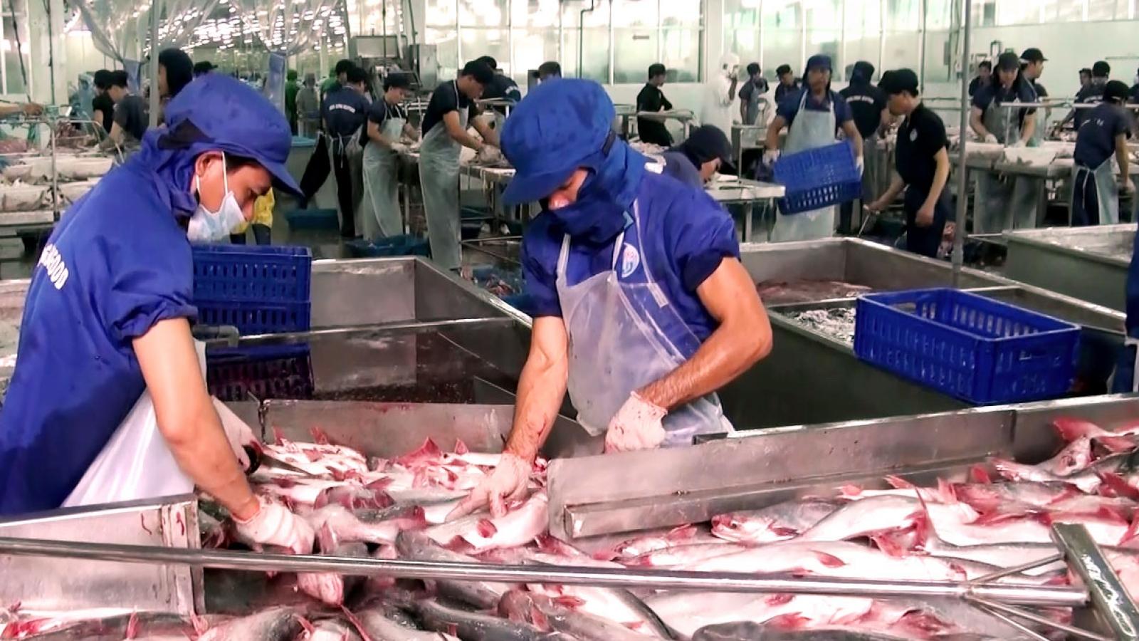 Mỹ áp thuế chống bán phá giá cá tra-basa Việt Nam về mức 0,15 USD/kg