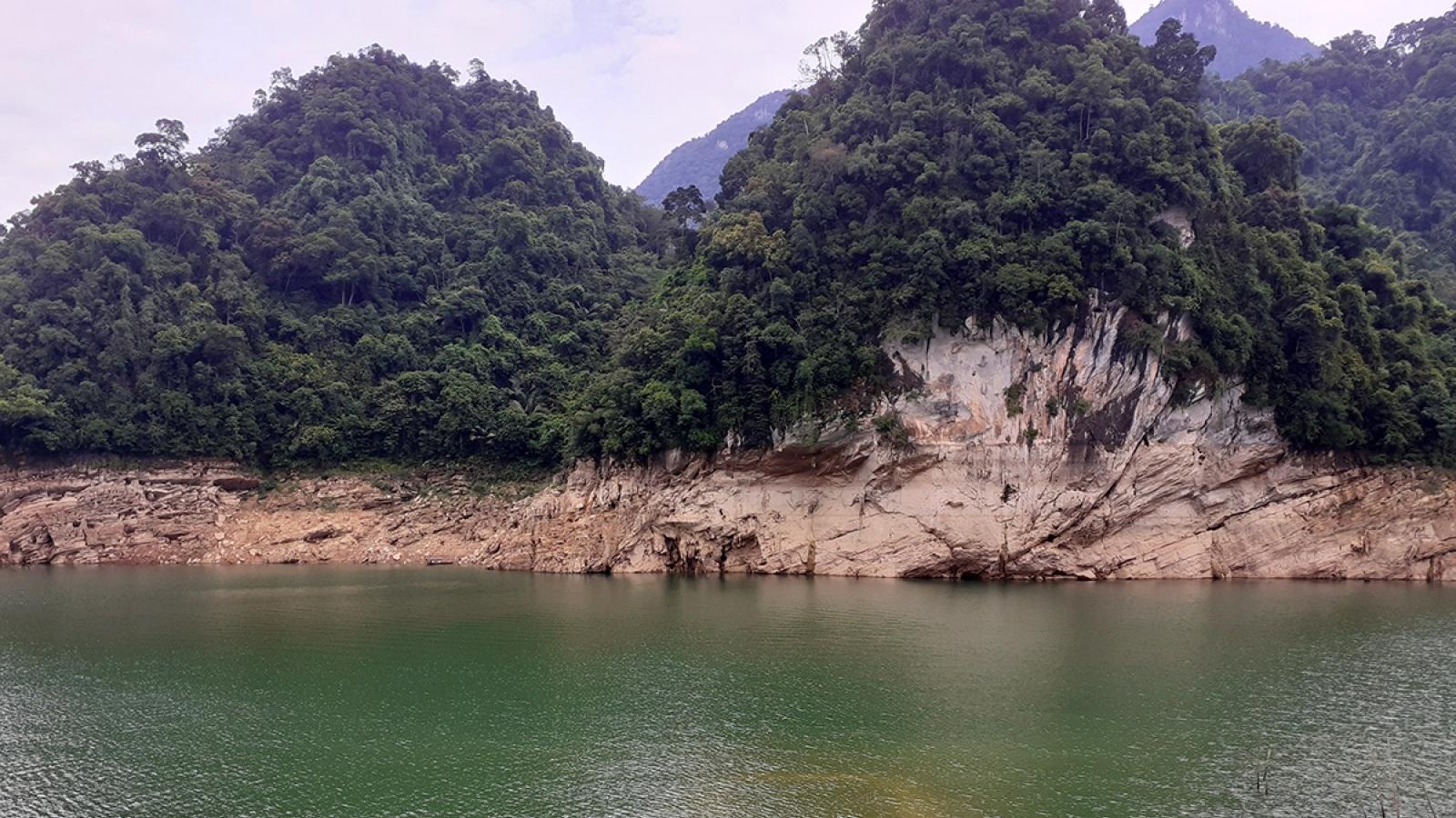 Tuyên Quang gặp khó trong quản lý giao đất, giao rừng