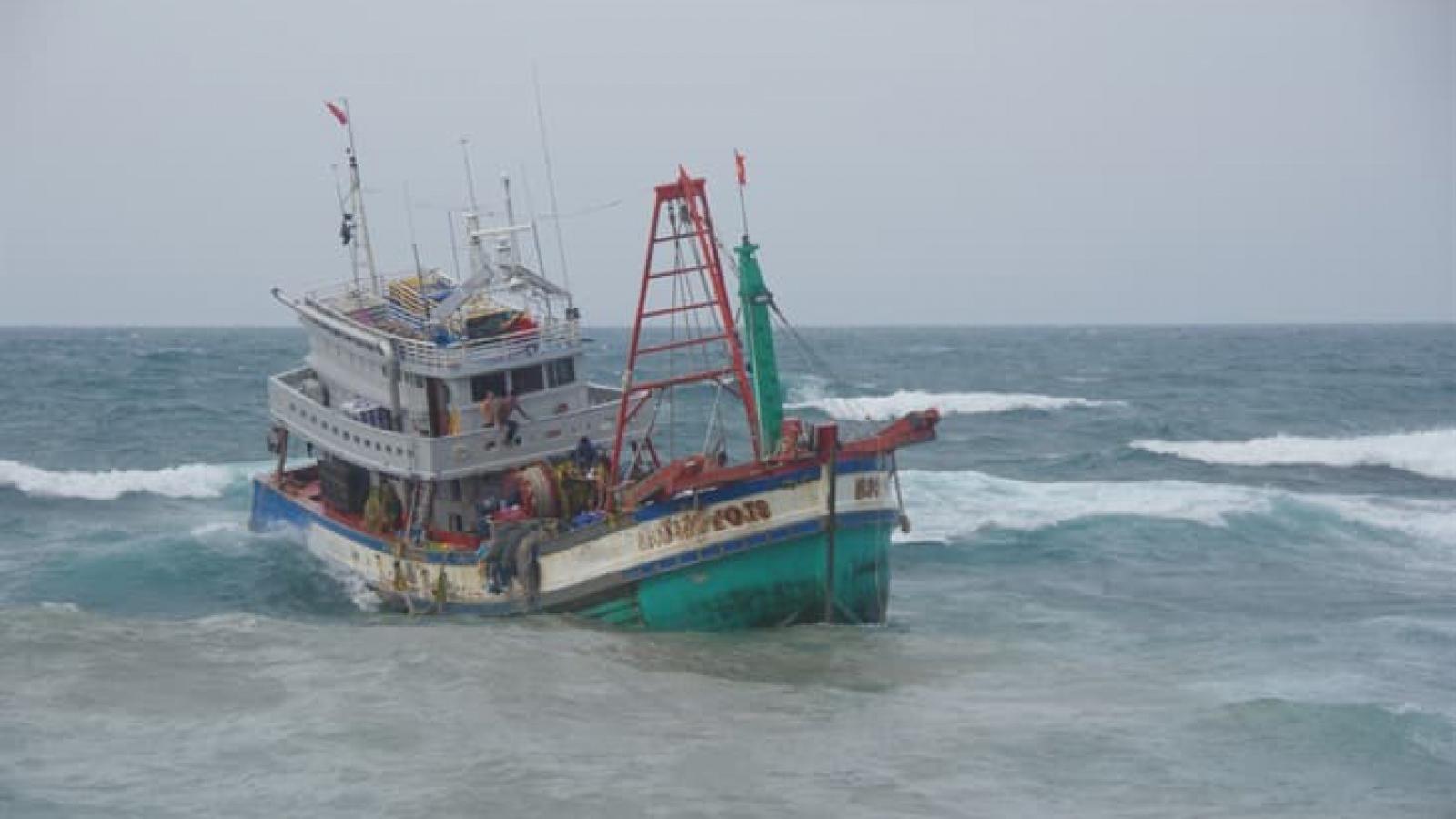Cứu hộ 19 thuyền viên tàu cá Kiên Giang gặp nạn ở Bạch Long Vỹ