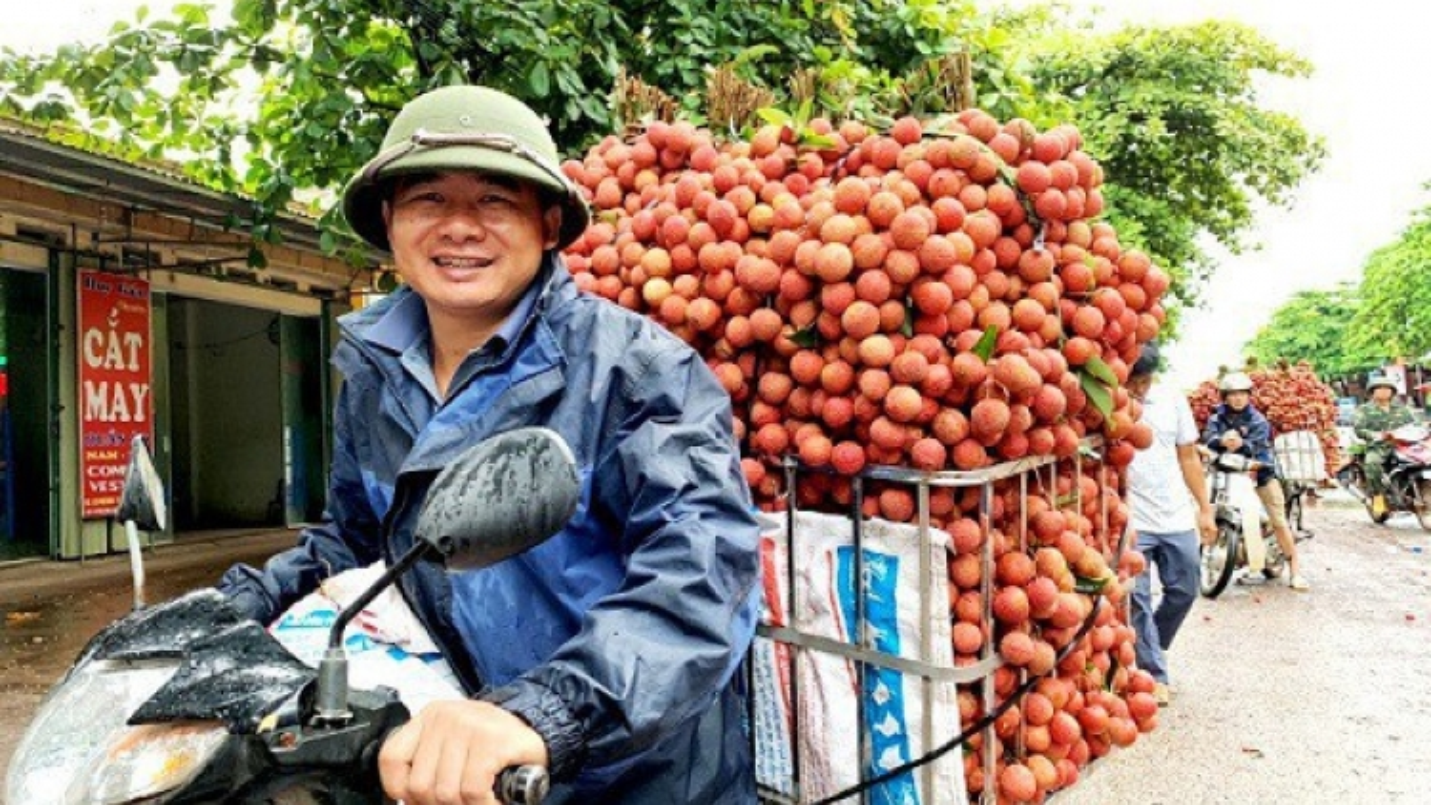 Bắc Giang đảm bảo sản lượng và giá trị vải thiều xuất khẩu
