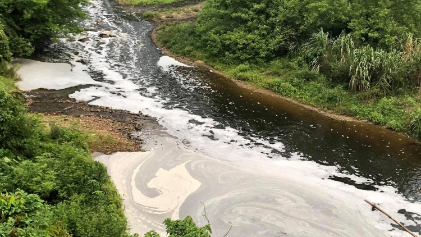 Chưa xác định được nguyên nhân khiến sông Phó Đáy có dấu hiệu ô nhiễm
