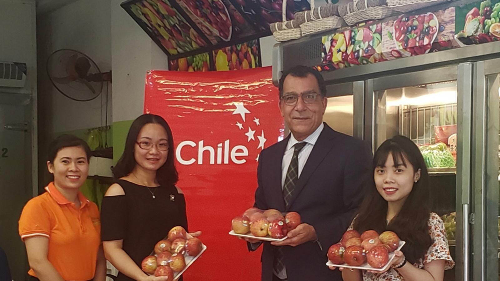 Lô hàng táo Chile đầu tiên có mặt tại thị trường Việt Nam