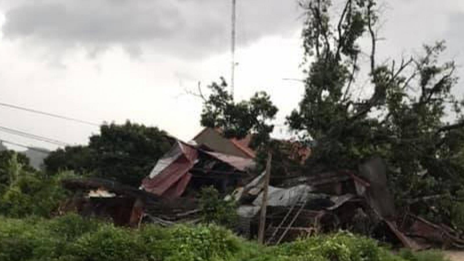 Cây cổ thụ gẫy, đổ sập nhà xưởng do mưa lốc ở Sơn La