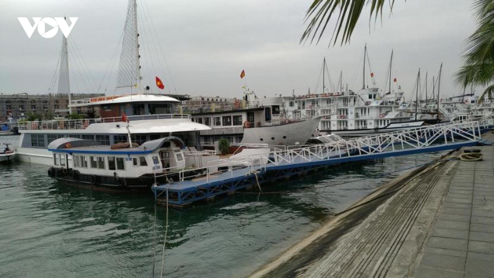 Hơn 100 hộ kinh doanh tàu du lịch Quảng Ninh xin tạm dừng hoạt động