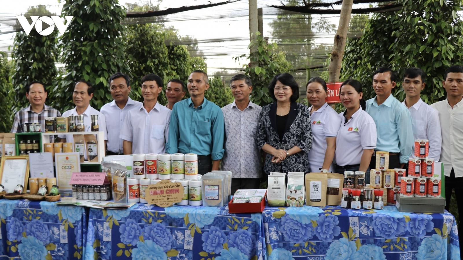 Phó Chủ tịch nước Đặng Thị Ngọc Thịnh làm việc tại huyện Đăk Đoa, Gia Lai
