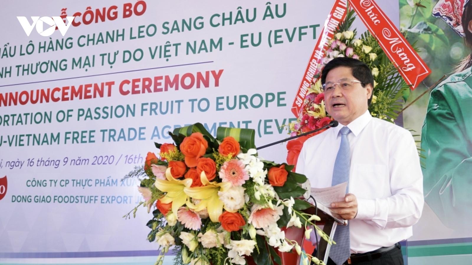 Gia Lai xuất khẩu lô chanh leo đầu tiên theo Hiệp định EVFTA sang EU