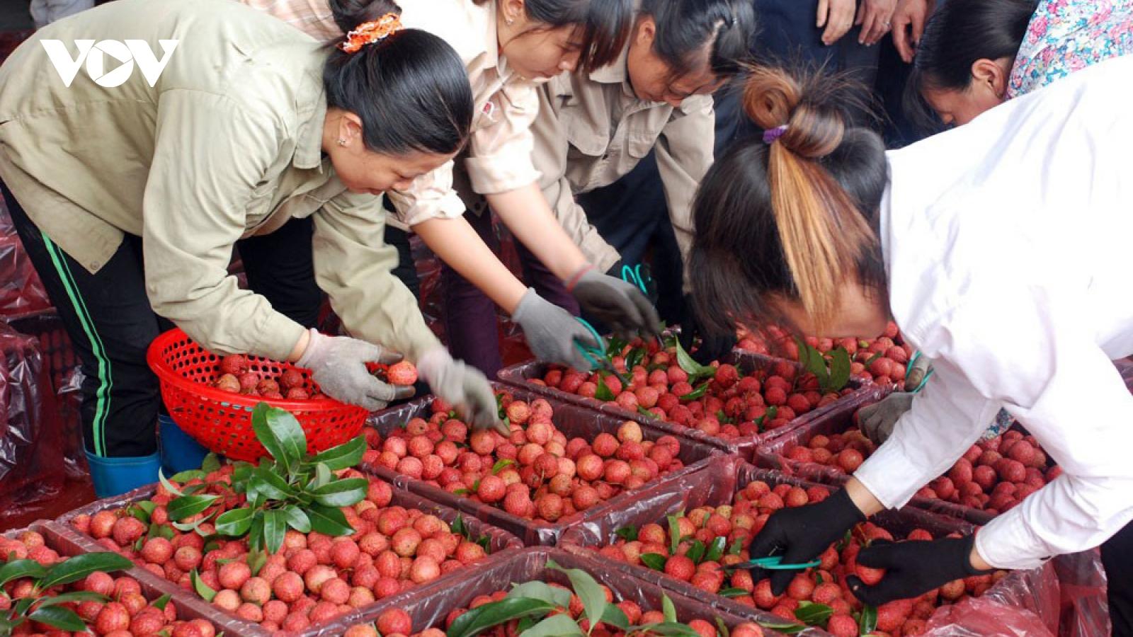 Cơ hội cho nông sản Việt Nam vào châu Âu sau khi EVFTA có hiệu lực