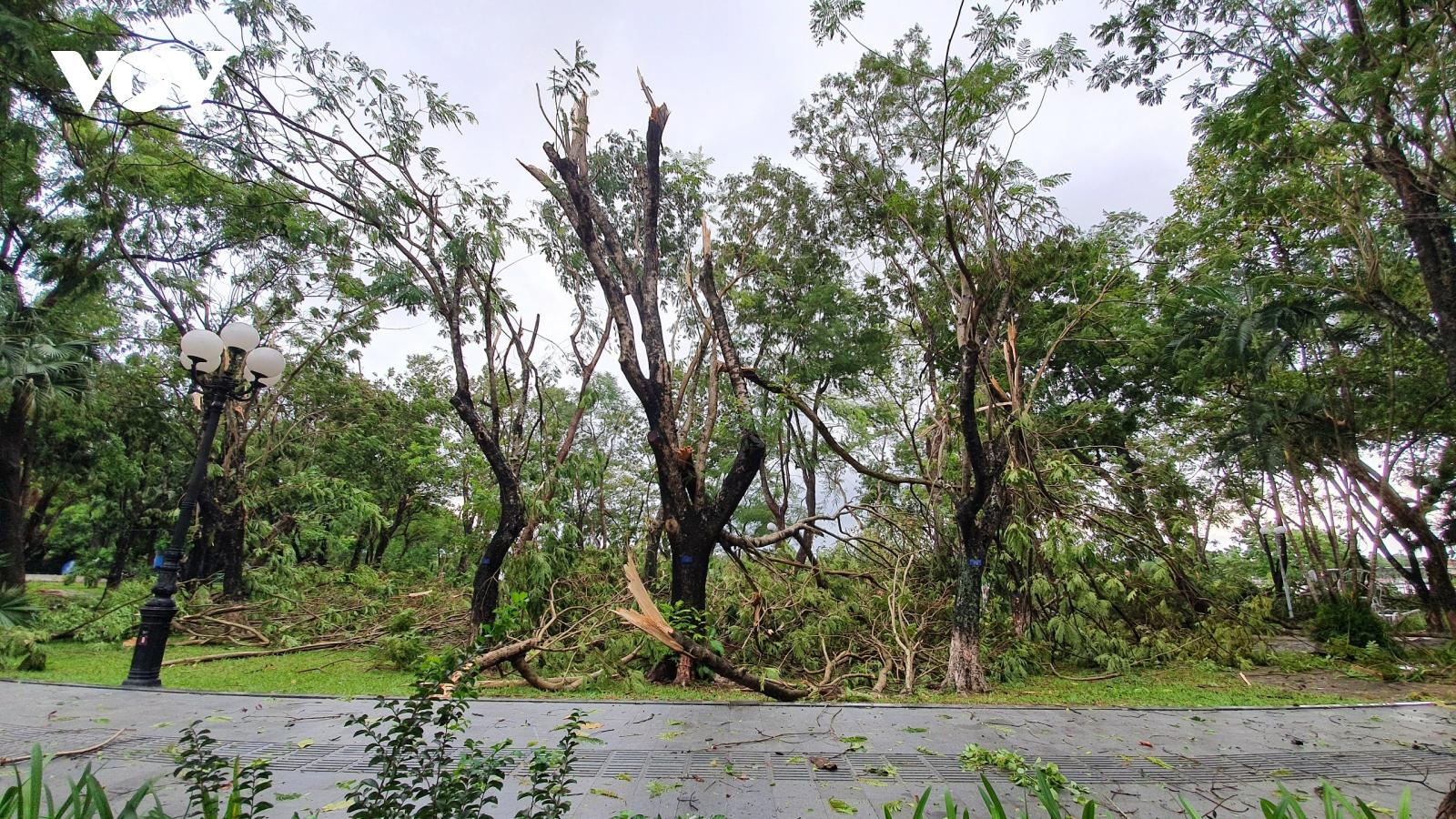 Khoảnh khắc bão số 5 đổ bộ gây mưa to gió giật mạnh ở Huế