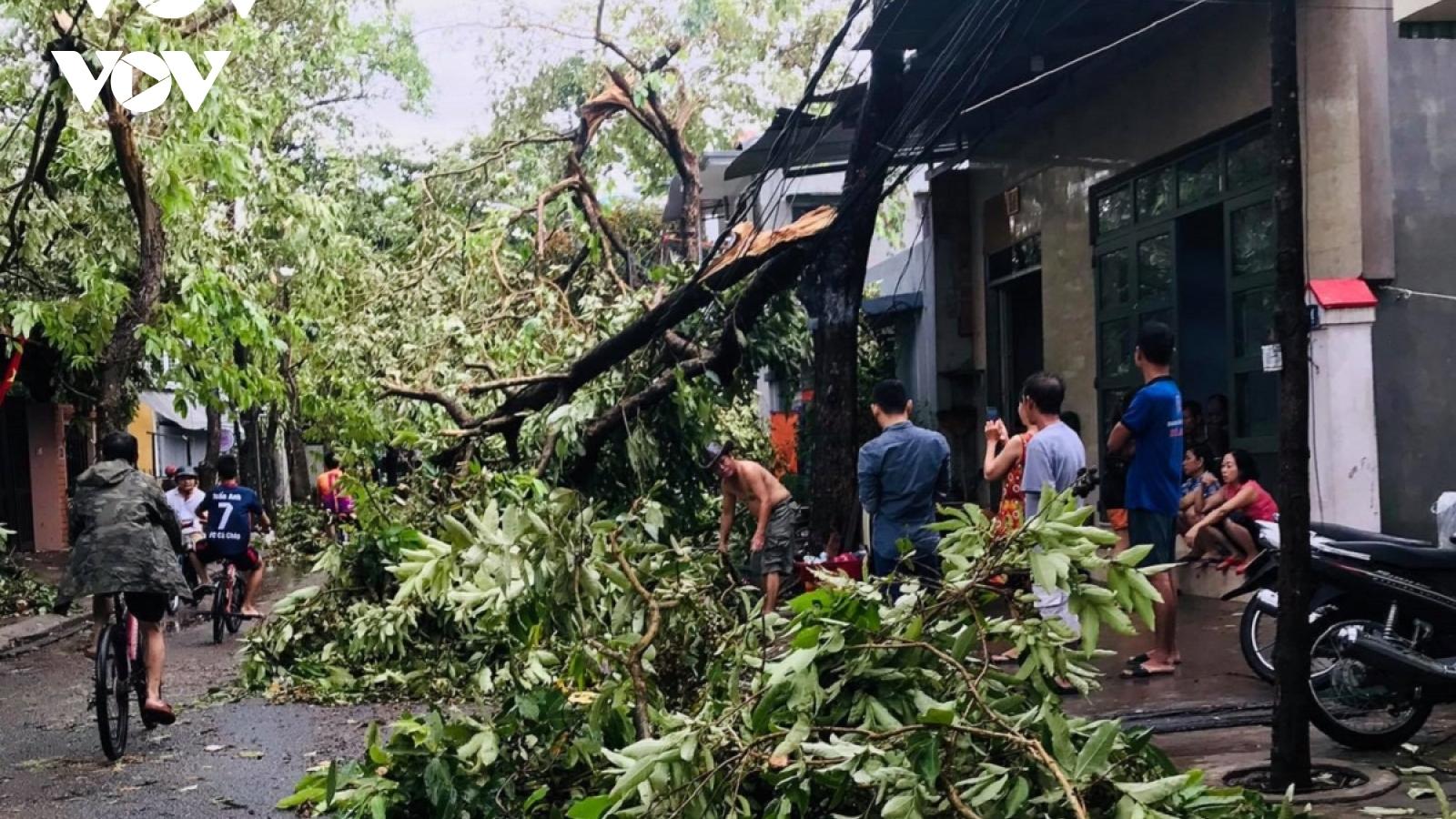 1 người chết, 1 người mất tích và 110 người bị thương do bão số 5