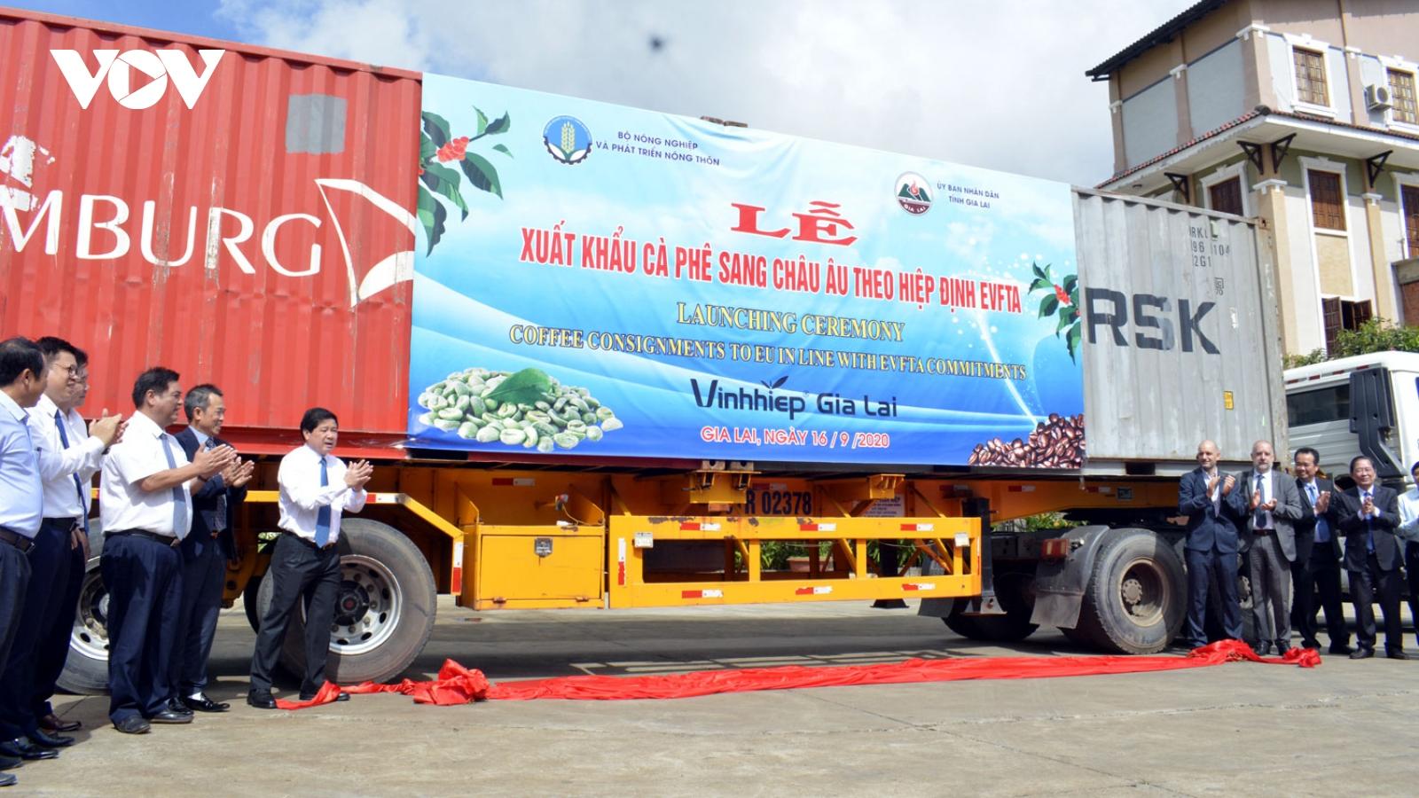 Tận dụng EVFTA, gần 300 tấn cà phê được xuất khẩu sang EU