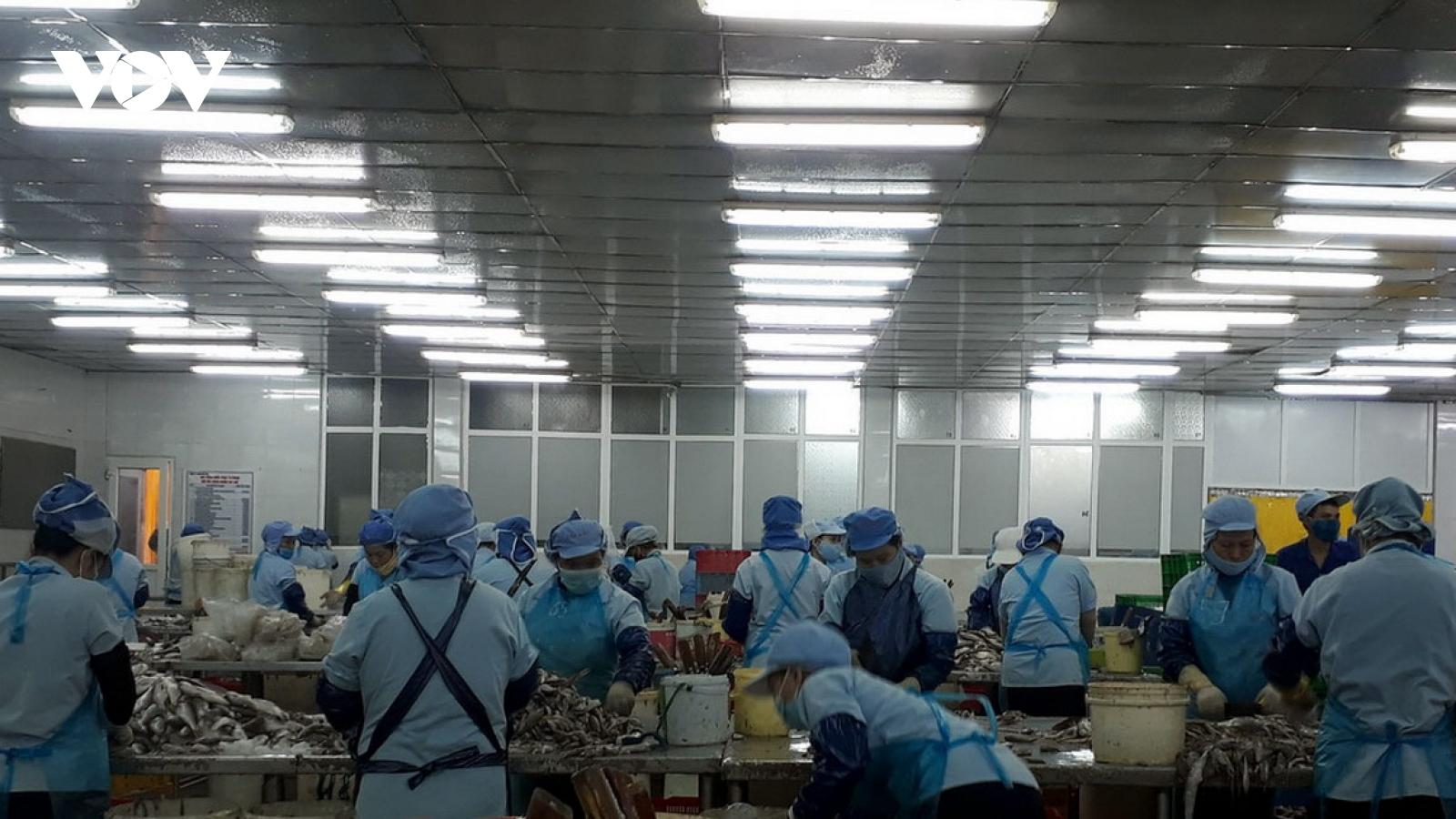 """Từ nghề vá lưới thuê thành ông chủ doanh nghiệp thủy sản """"tầm cỡ"""" ở Đà Nẵng"""