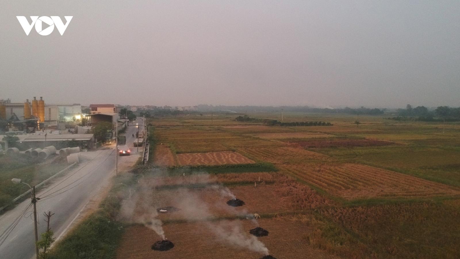 Đến 1/1/2021, Hà Nội sẽ chấm dứt tình trạng đốt rơm rạ