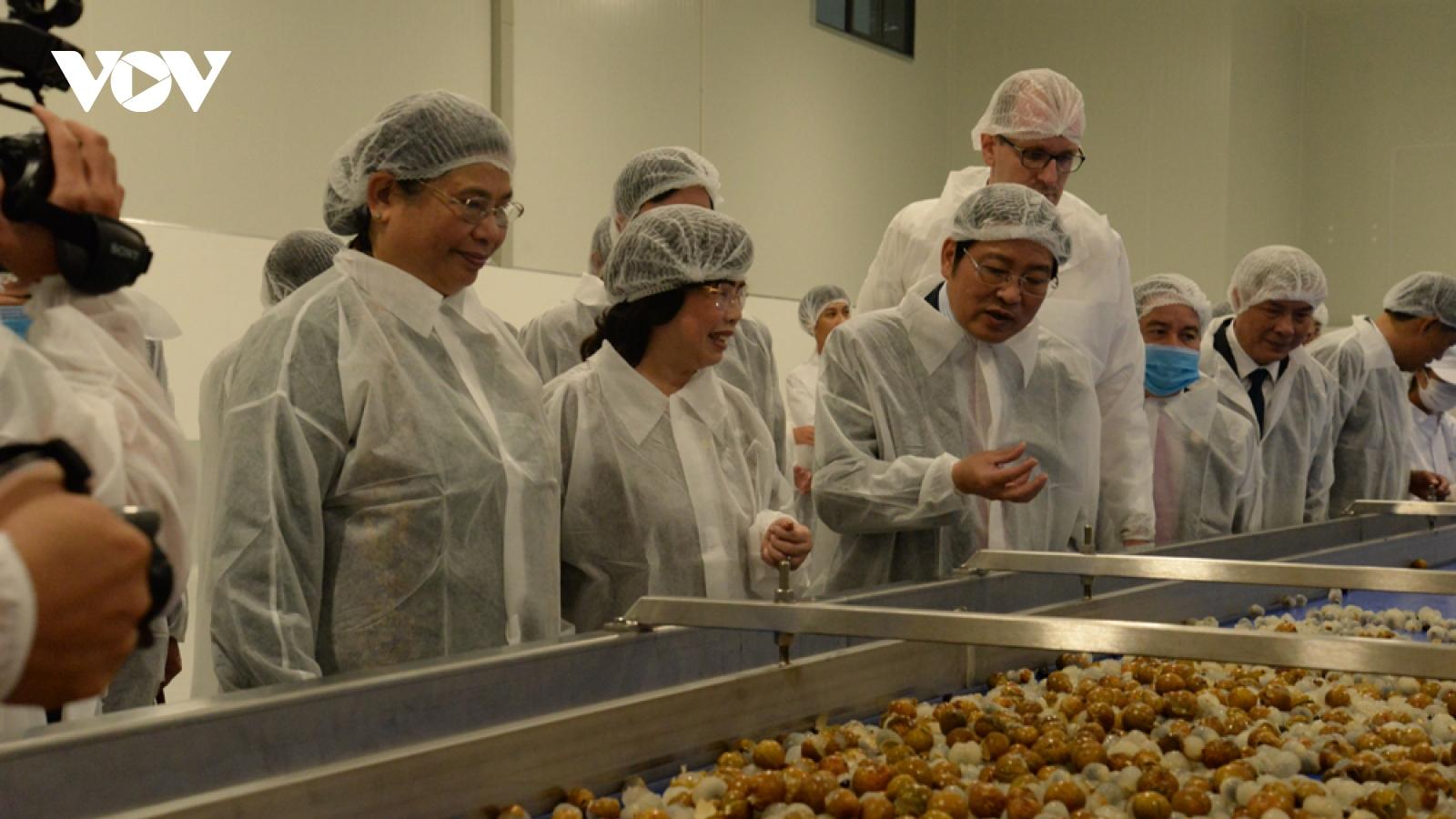Khánh thành Nhà máy chế biến hoa quả tươi tại Vân Hồ