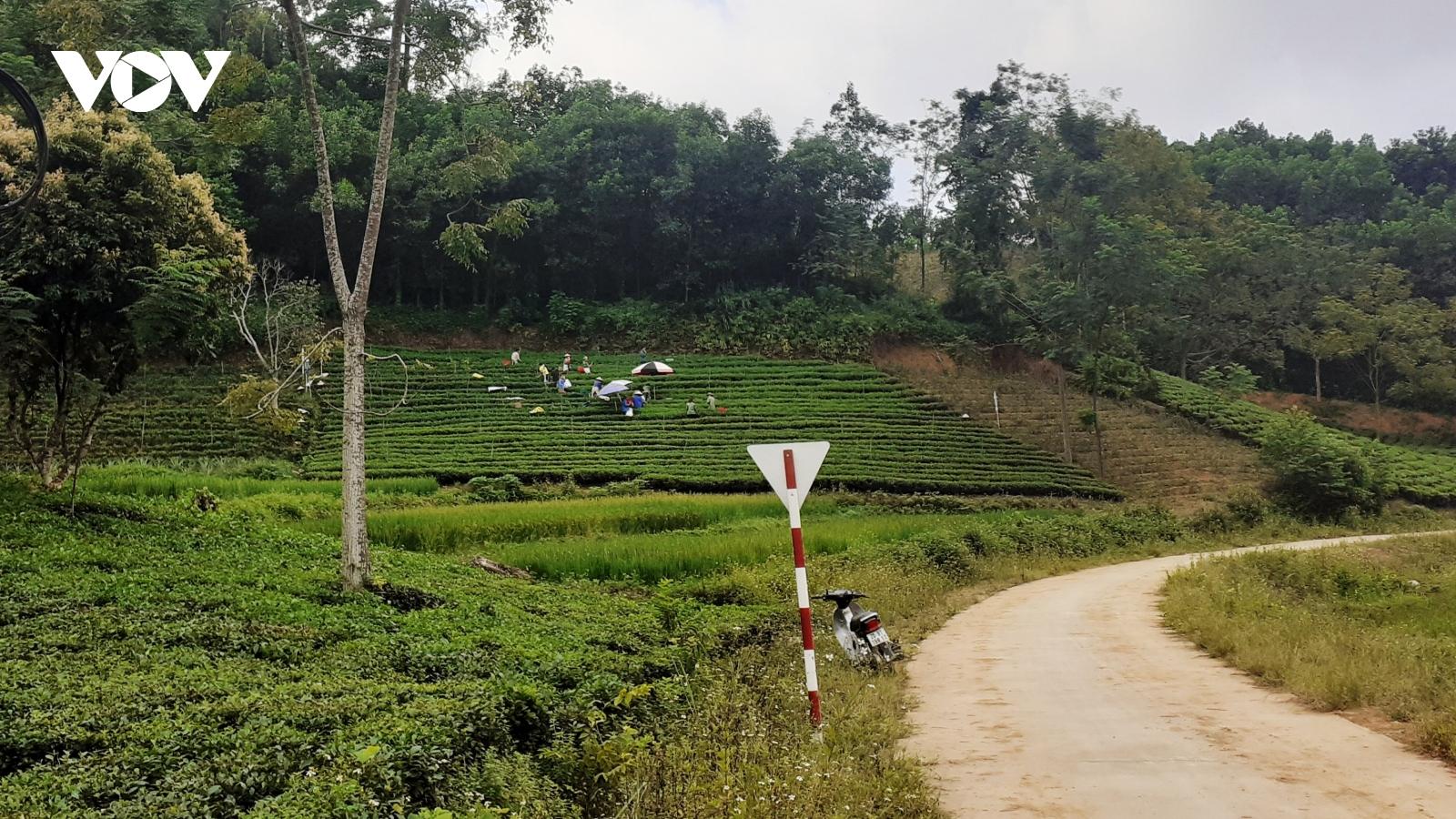 Thái Nguyên làm gì để chương trình xóa nghèo bền vững đi vào cuộc sống