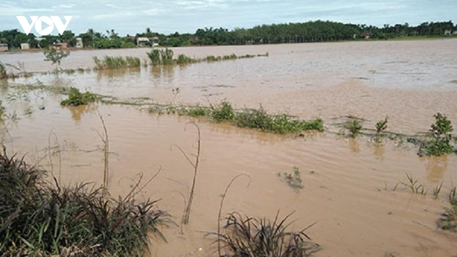 Mưa liên tục gây thiệt hại lớn tại Ninh Thuận và Bình Thuận
