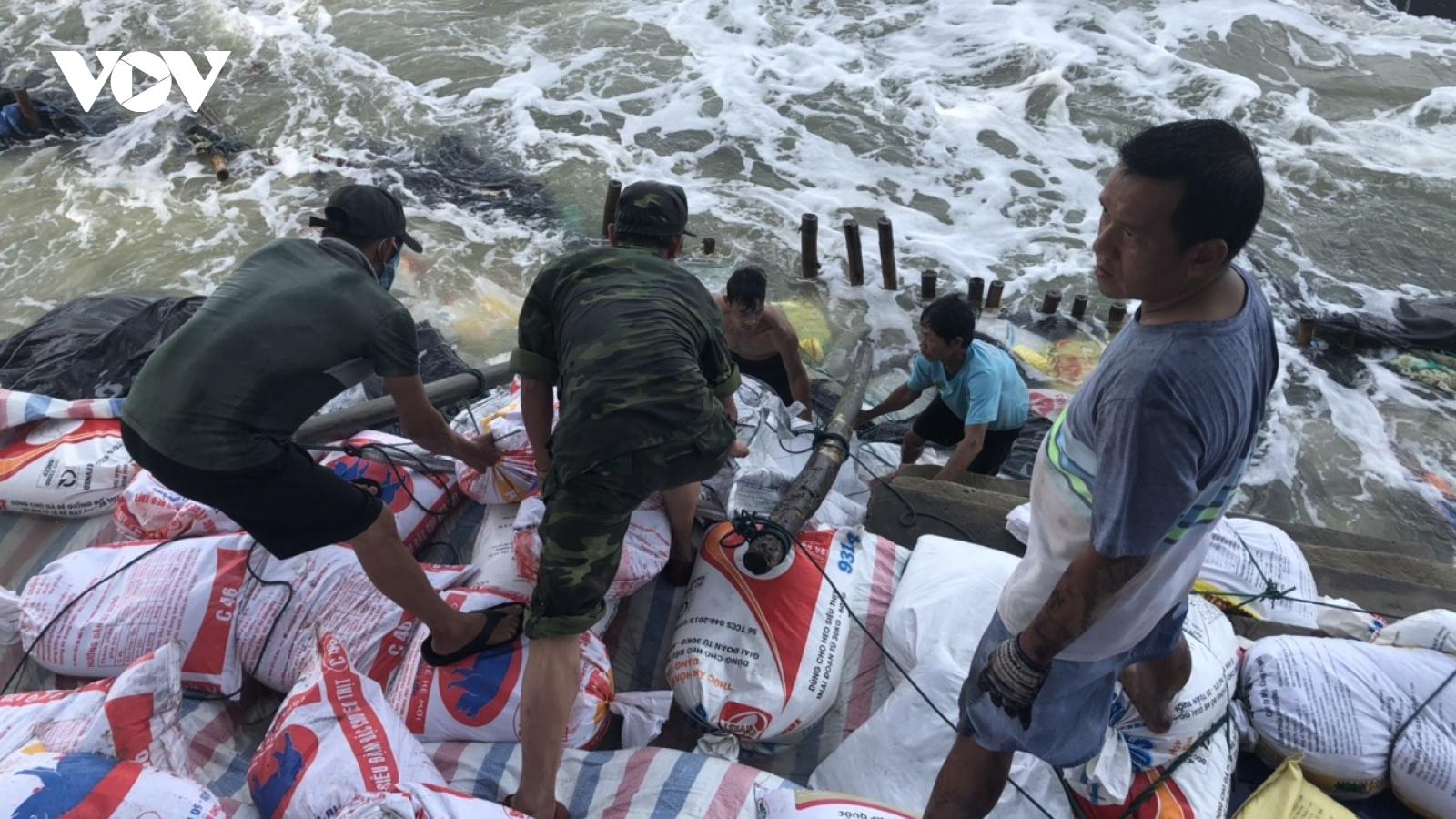 Hội An khẩn cấp khắc phục sạt lở bờ biển Cửa Đại