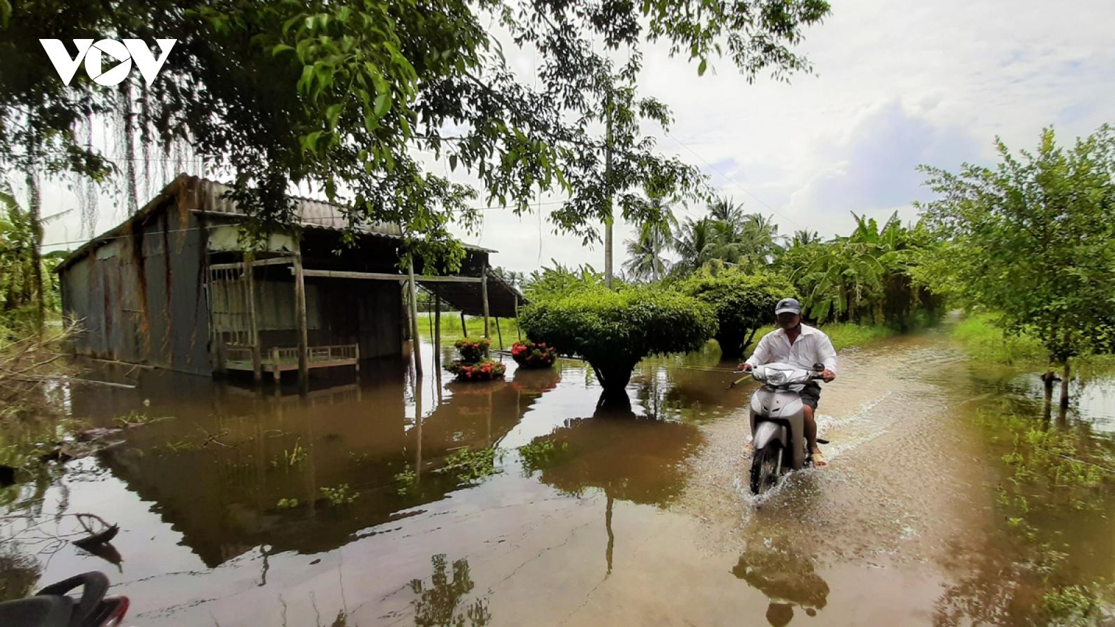 Cà Mau khẩn trương khắc phục thiệt hại do ngập lụt
