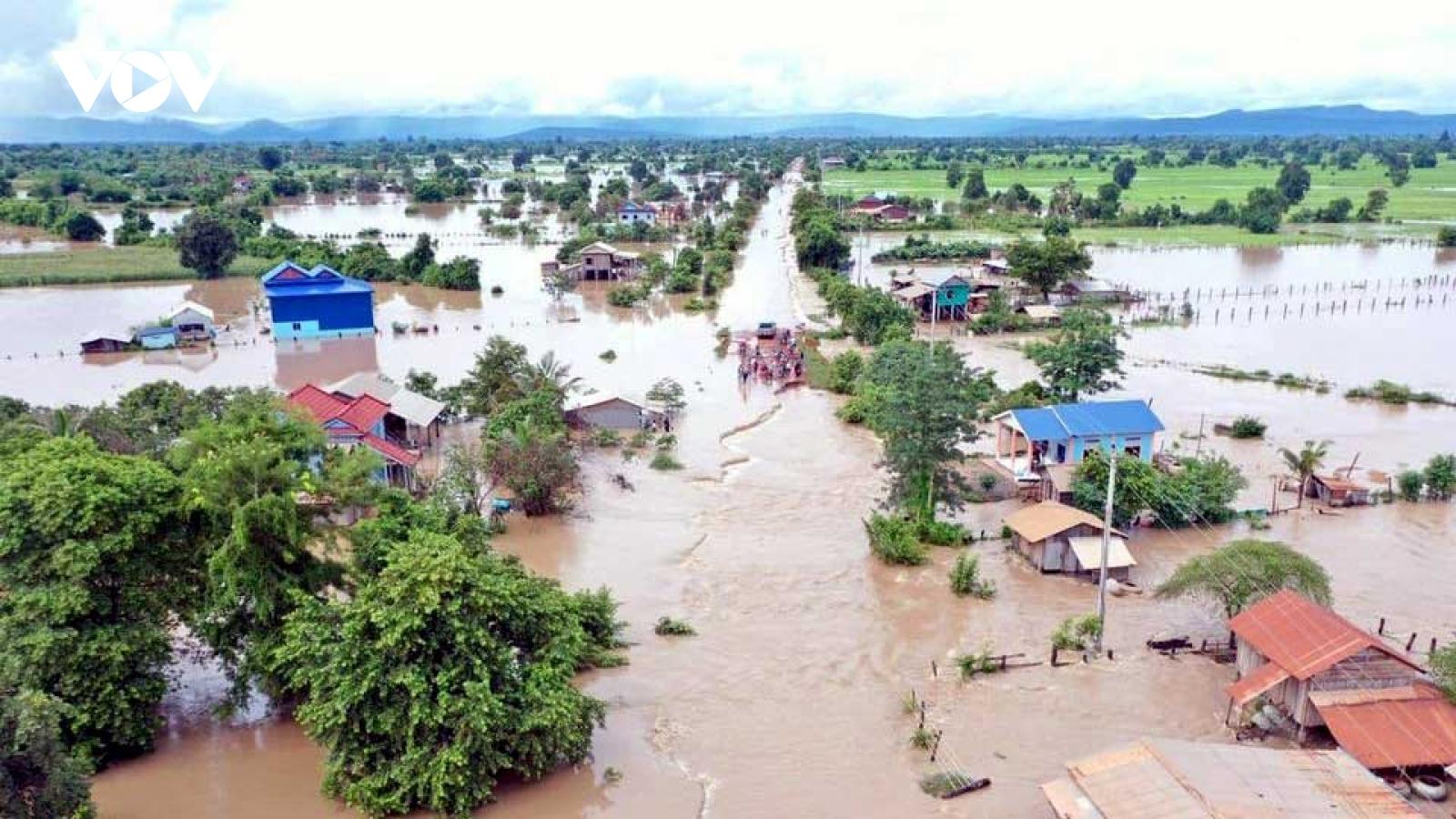 Lũ lụt tại Campuchia có thể ảnh hưởng tới xuất khẩu thóc sang Việt Nam