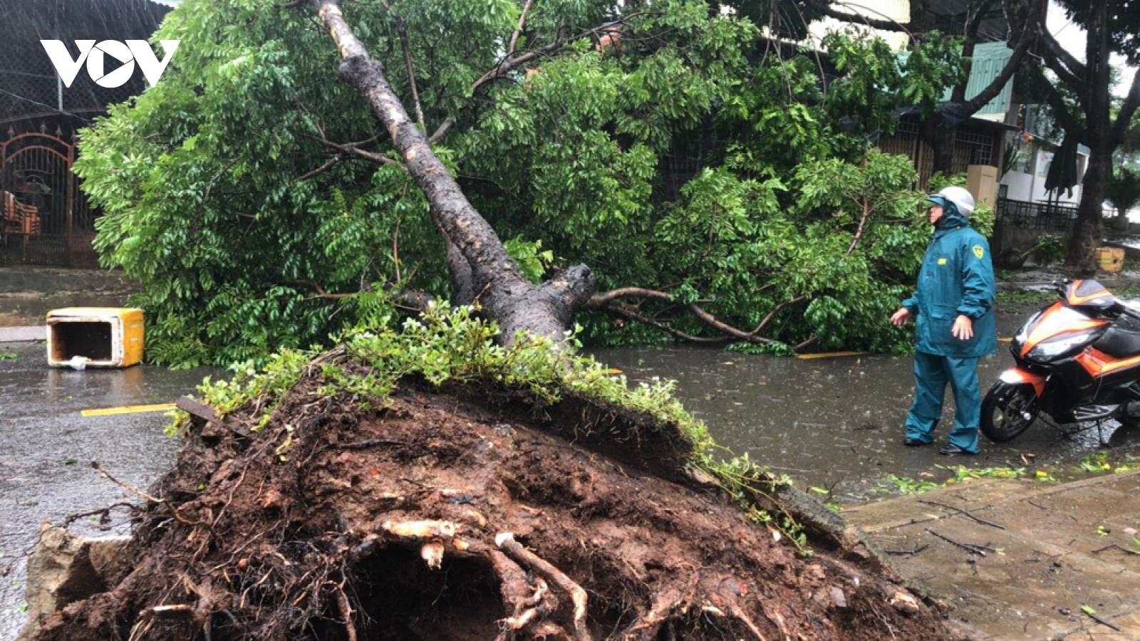 Gió bão càn quét gây nhiều thiệt hại trên phố núi Gia Lai