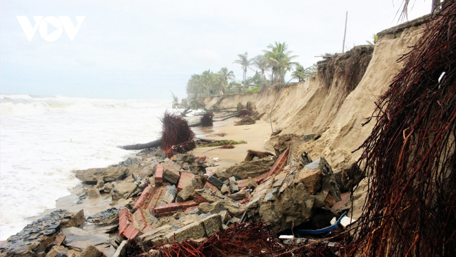 Quảng Nam phân bổ 200 tỷ đồng chống xói lở bờ biển Cửa Đại