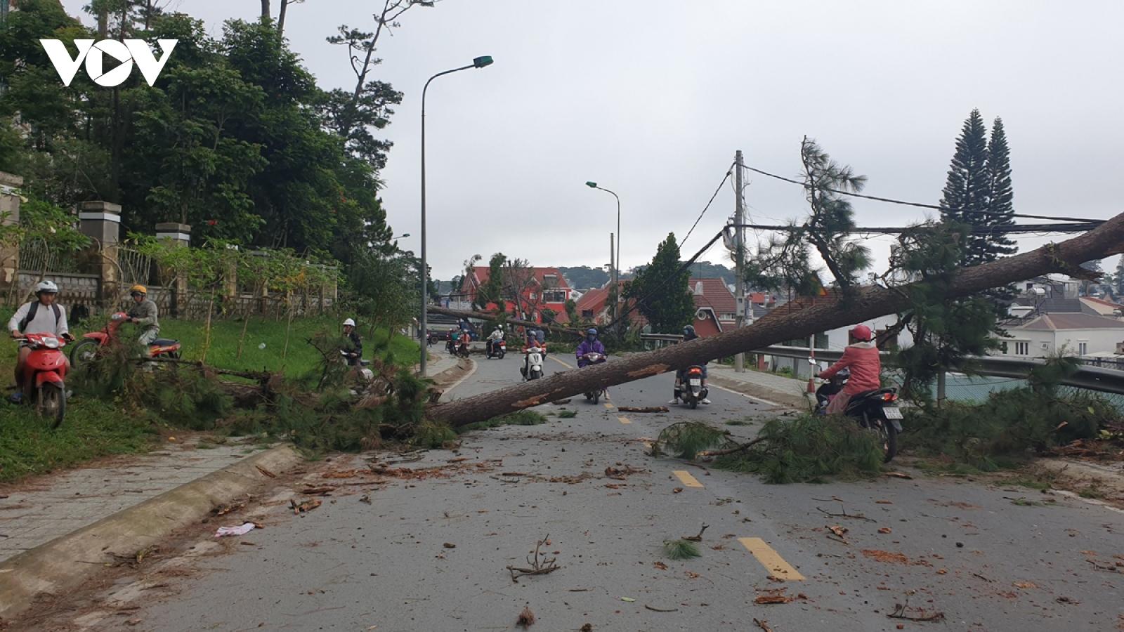 Lâm Đồng hỏa tốc cho học sinh nghỉ học tránh bão số 9