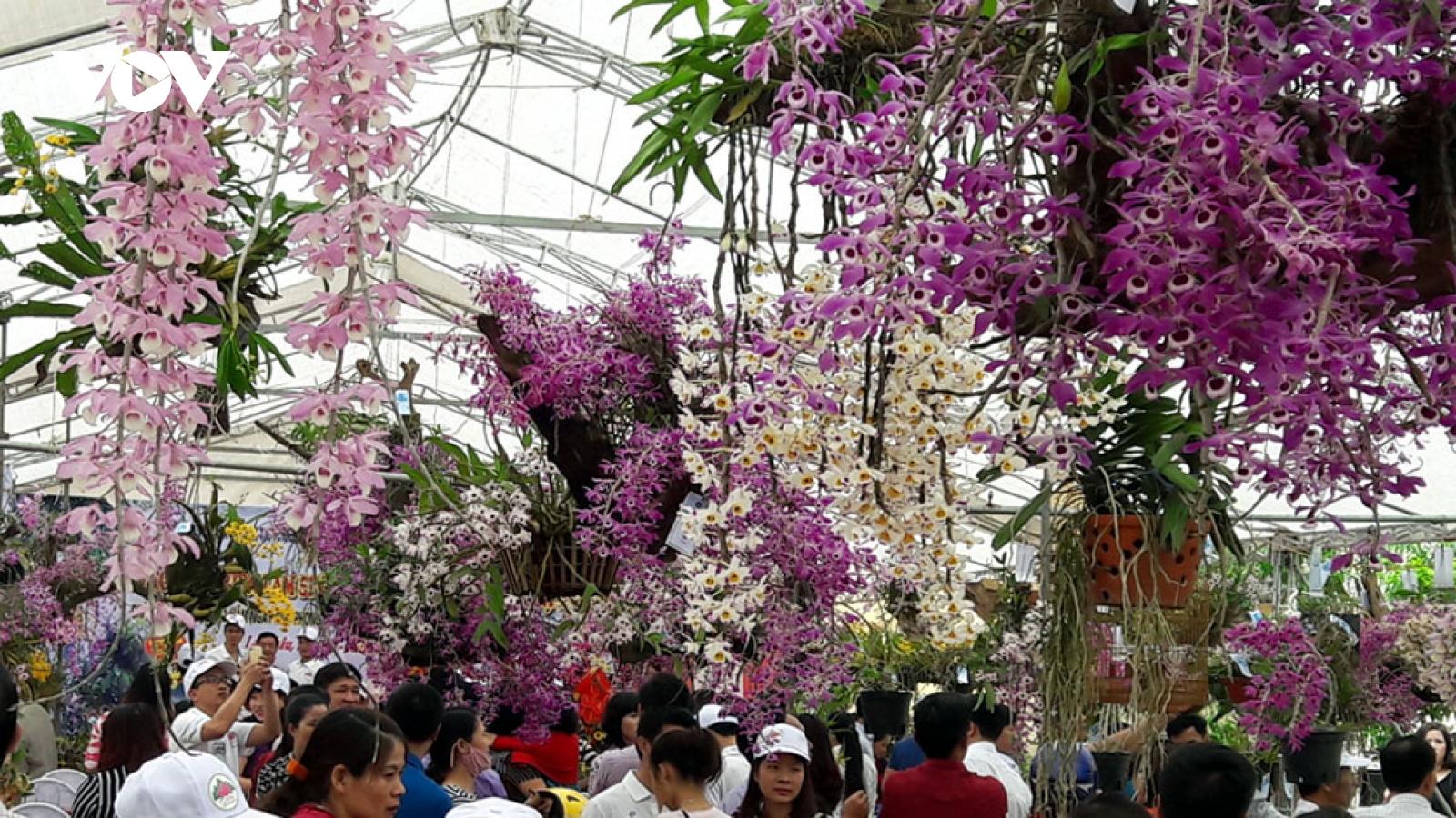 Nông nghiệp chuỗi giá trị kinh tế cao - hướng đi bền vững ở Lai Châu