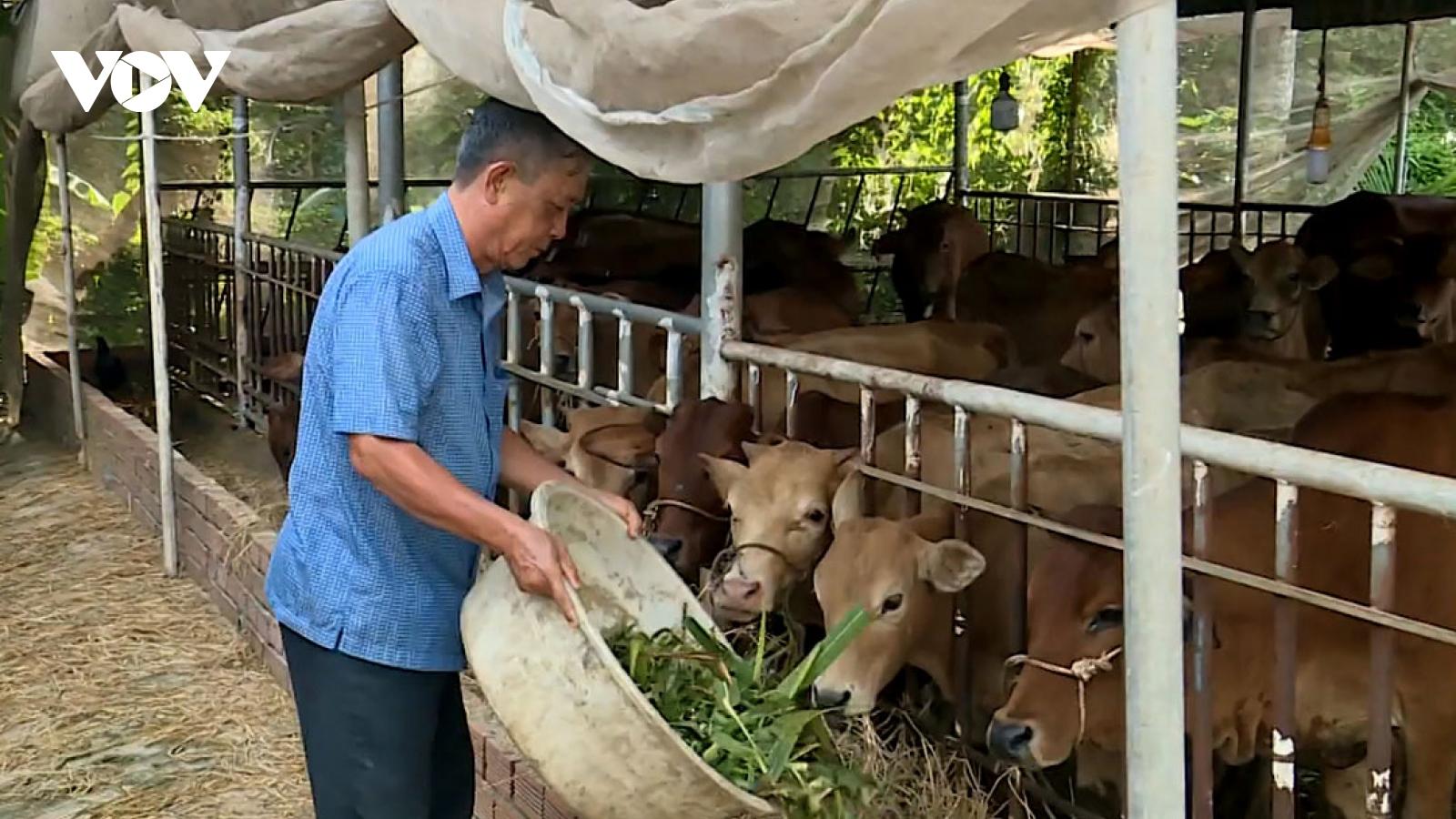"""""""Nông dân Việt Nam xuất sắc"""" Dương Văn Tạo luôn hết lòng vì hộ nghèo"""
