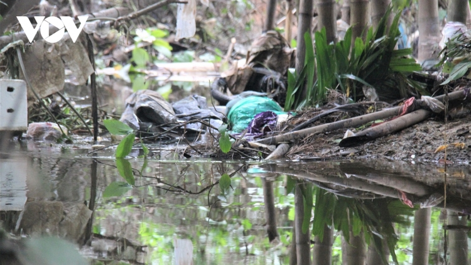 Phát hiện thi thể phụ nữdưới kênh thoát nước ở Tam Kỳ,Quảng Nam
