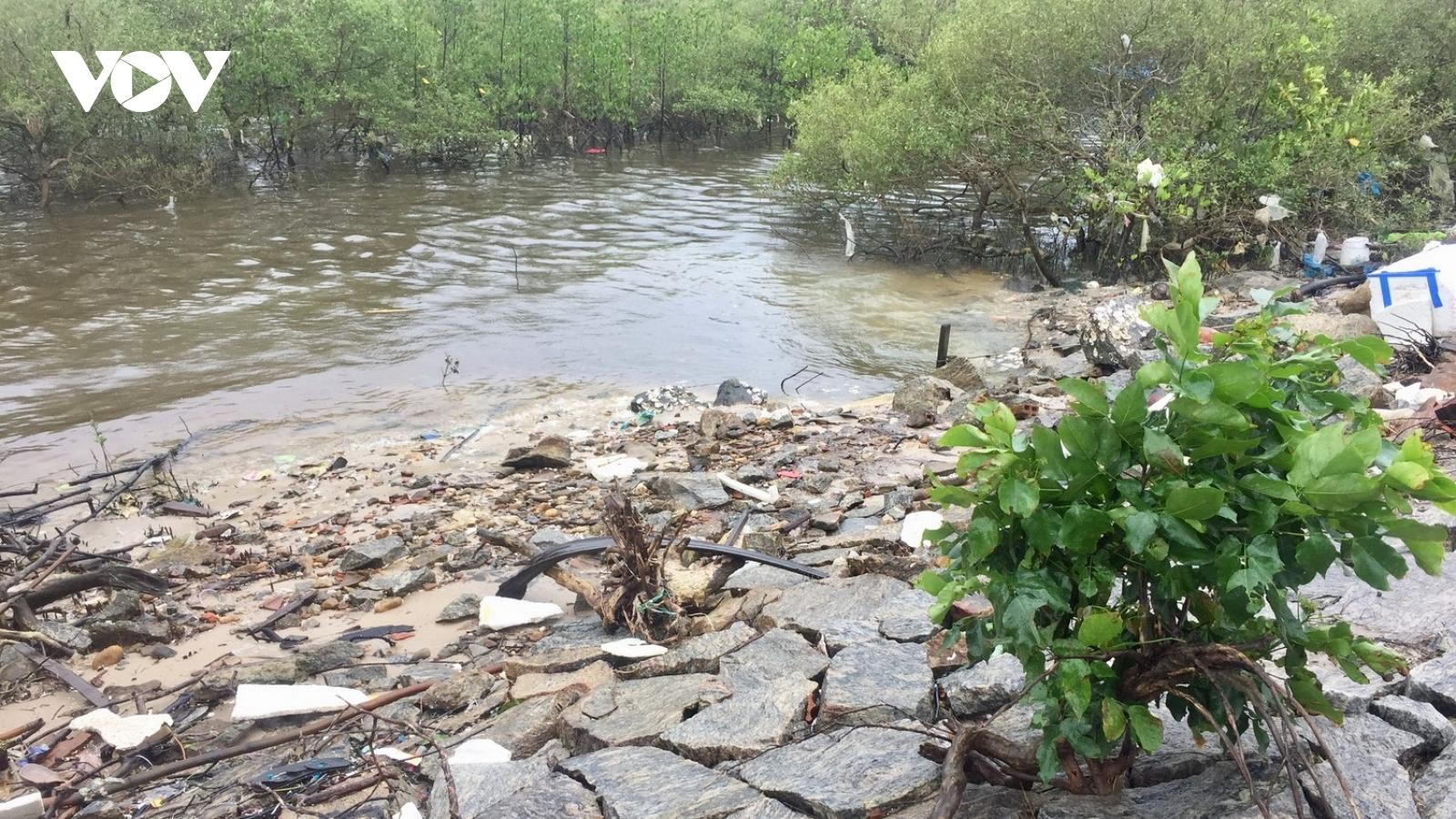 Nhiều tuyến đê kè tiếp tục sạt lở sau bão lũ