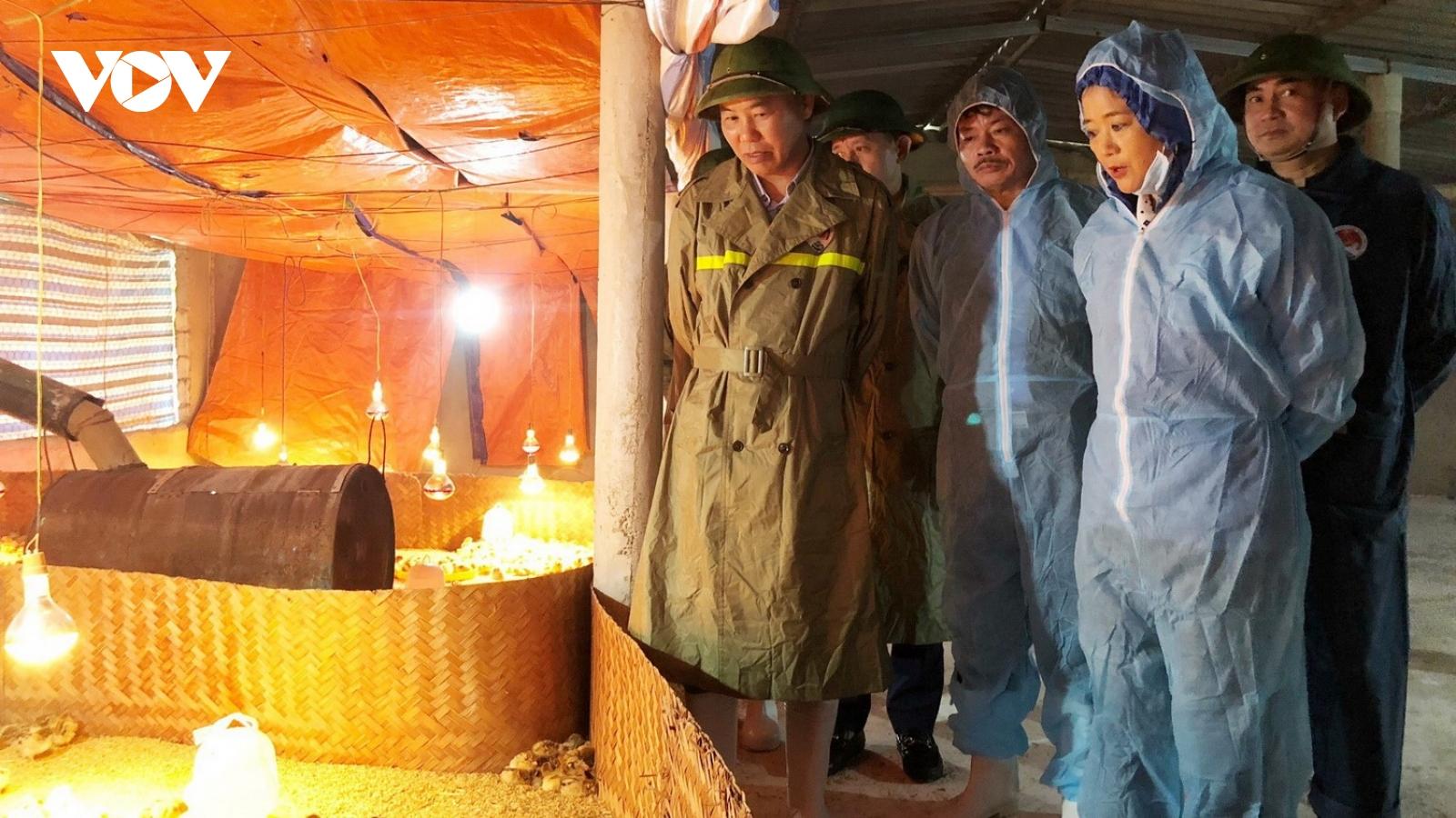 Bộ NN&PTNT kiểm tra khắc phục hậu quả mưa lũ tại Quảng Bình