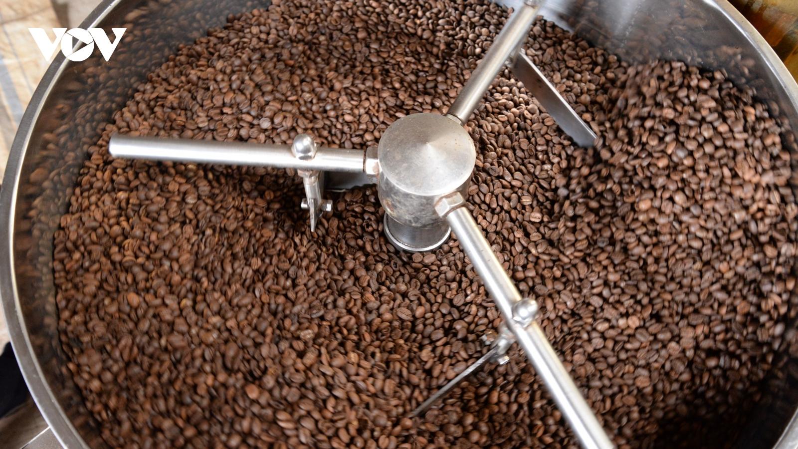 Sơn La hướng tới xây dựng sản phẩm cà phê OCOP 5 sao