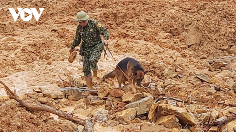 Rescue workers launch search for landslide victims in central Vietnam