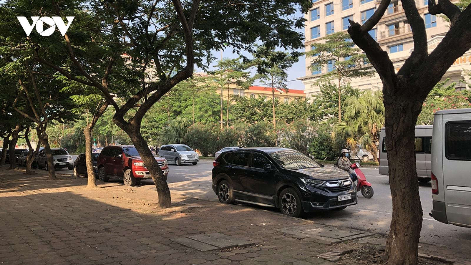 Nhiều cây xanh trên đường phố ở Hà Nội bị chết khô