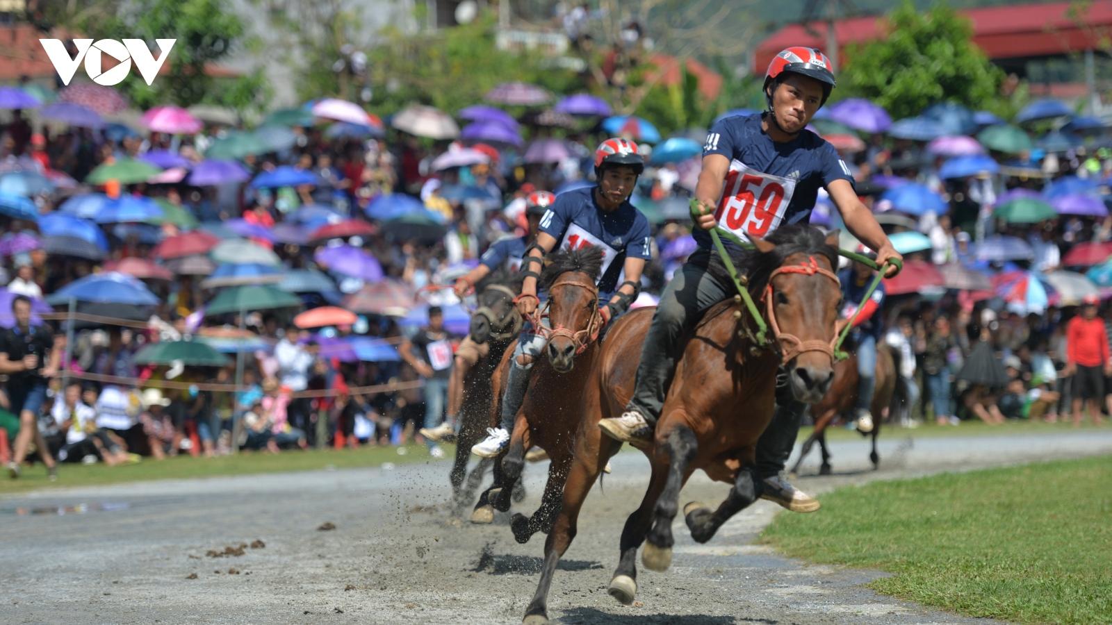 Tổ chức đua ngựa tại Lễ hội mùa đông Bắc Hà năm 2020