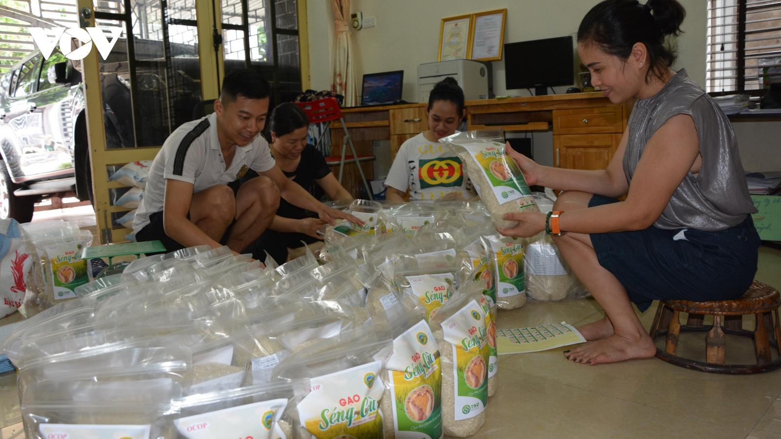 Sản phẩm OCOP nâng cao giá trịsản xuất nông nghiệp ở Yên Bái