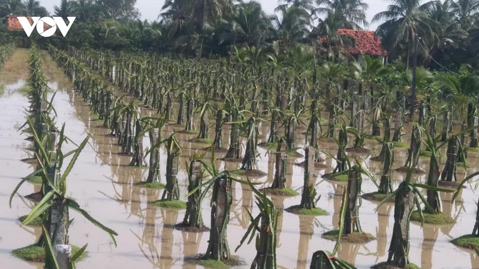 Triều cường kết hợp với mưa to gây ngập úng trên diện rộng ởTiền Giang