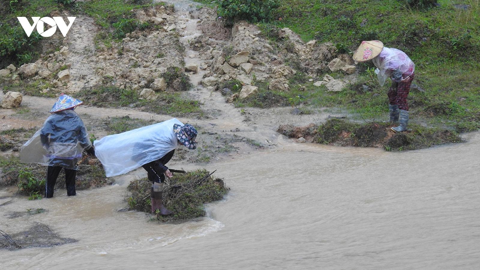 Tăng cường ứng phó với hoàn lưu bão số 12, bão số 13 và mưa lũ, sạt lở đất tại Kon Tum