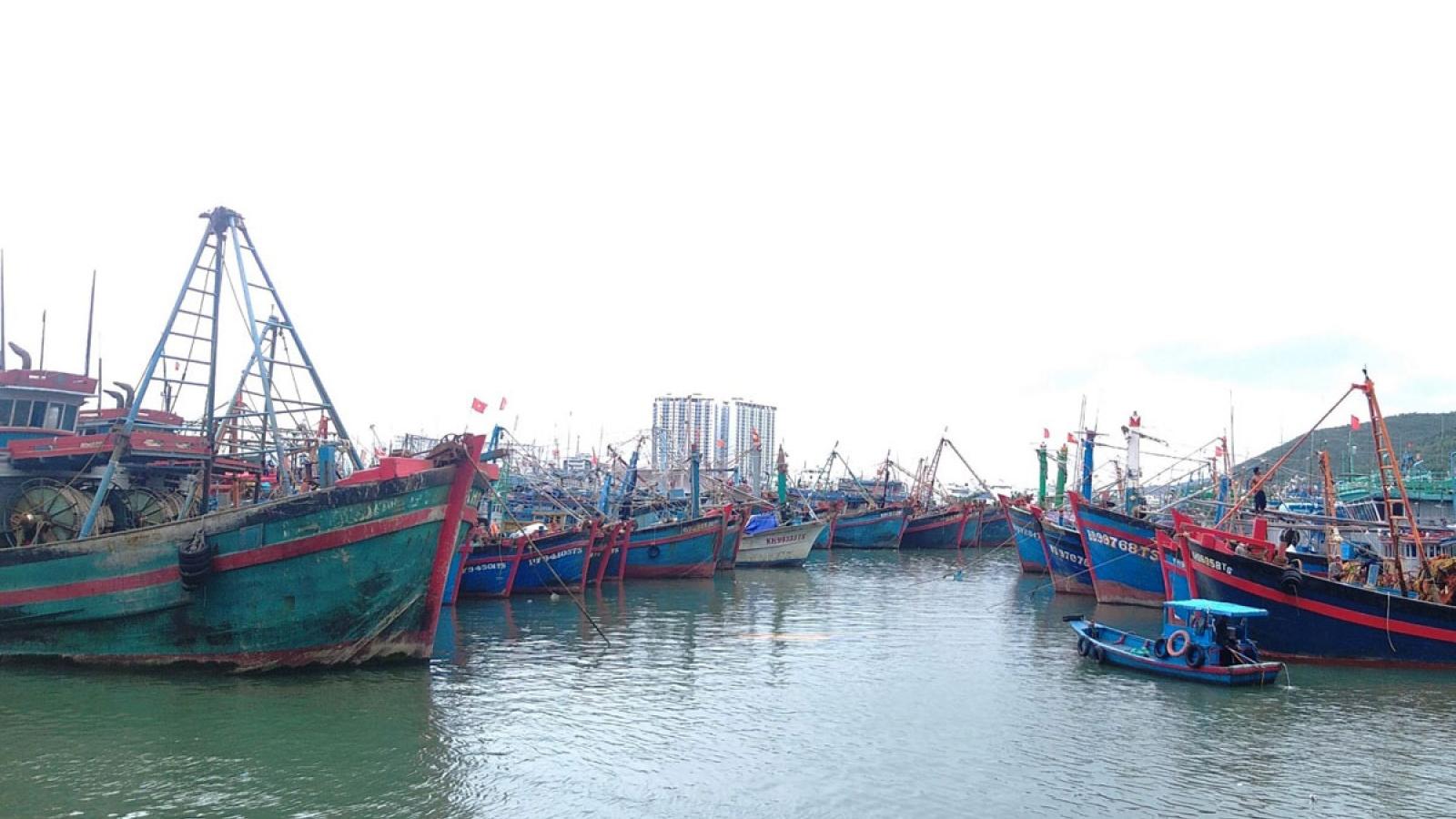 Bão số 12: Các tỉnh Nam Trung bộ cấm biển, kêu gọi tàu thuyền trú, tránh