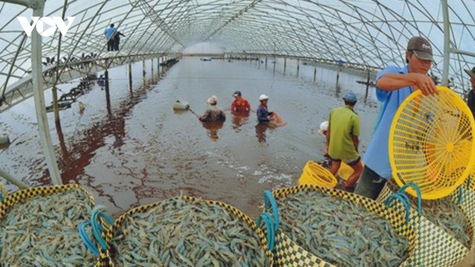 Phát triển thủy sản - trọng tâm mới của nông nghiệp ĐBSCL