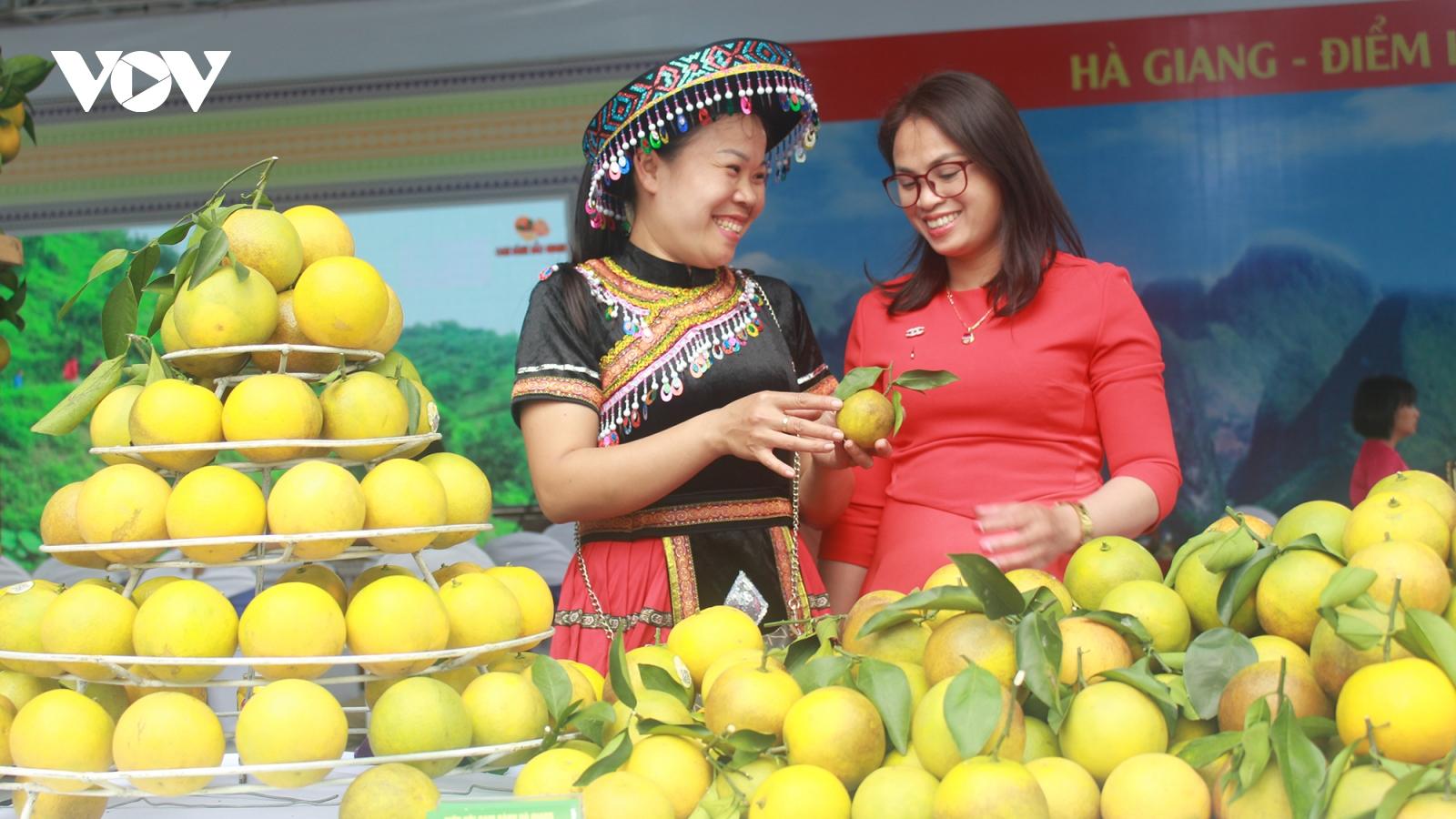 Đưa cam sành Bắc Quang – Hà Giang đến gần hơn  với các nhà phân phối tại Hà Nội