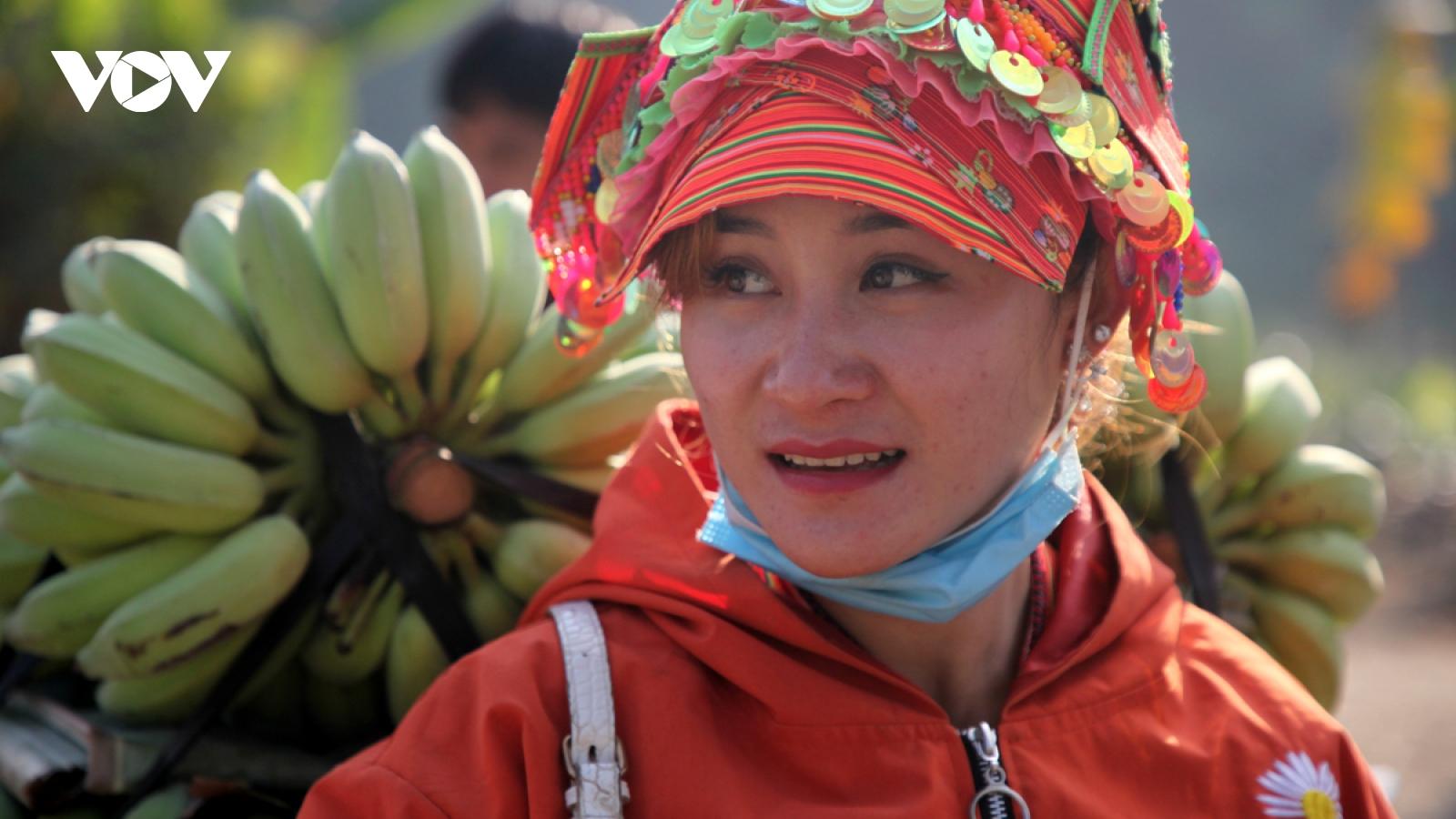 Nông dân Lai Châu làm giàu từ cây chuối xanh