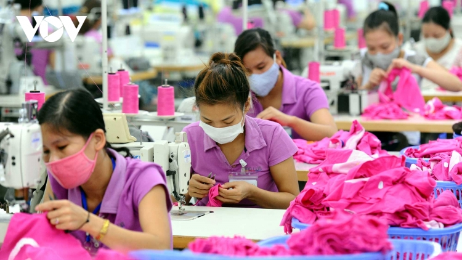 Cộng gộp xuất xứ nguyên liệu vải, dệt may Việt Nam rộng cửa vào EU