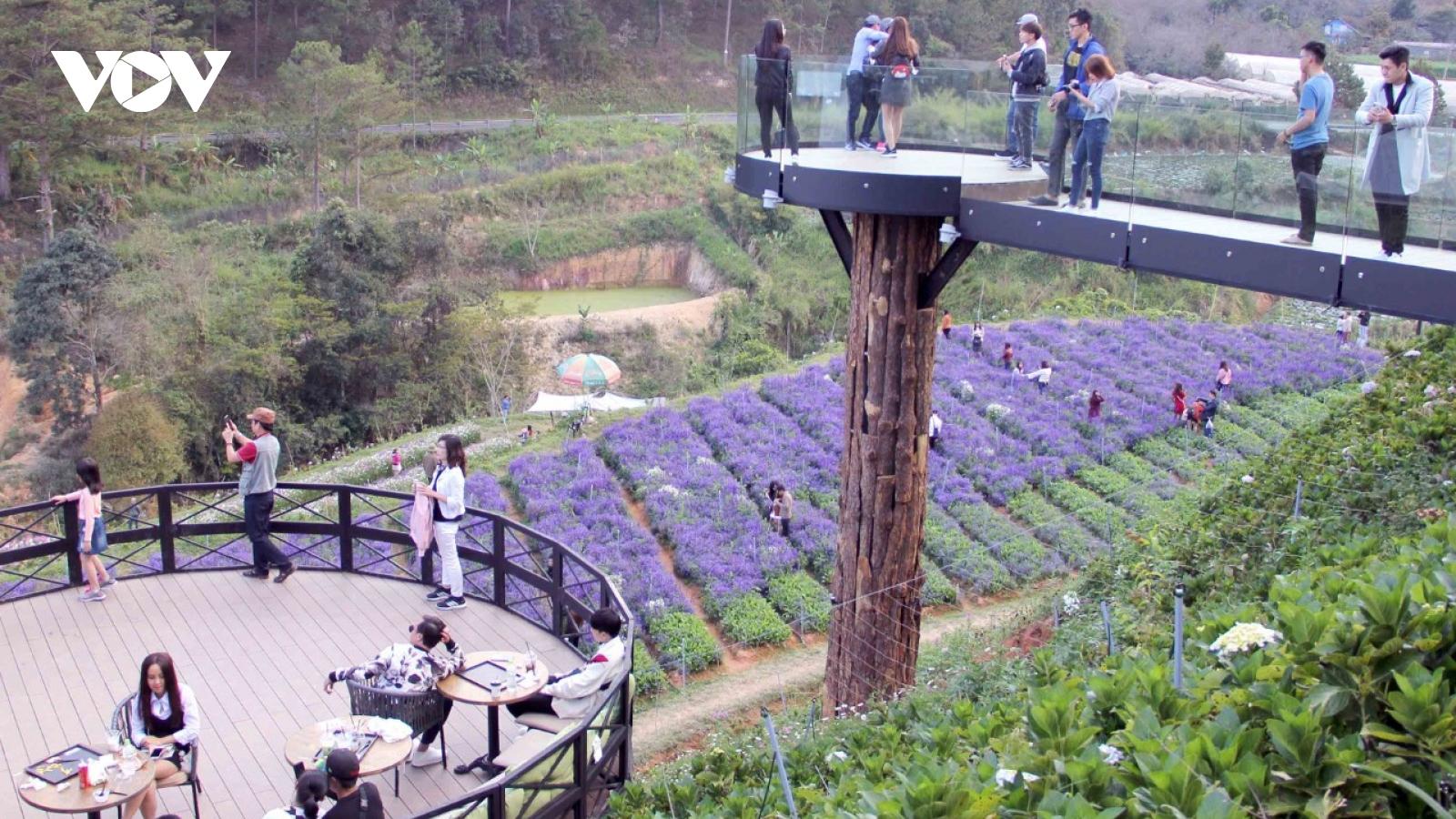 Du lịch canh nông Lâm Đồng: khắc phục bất cập để vươn tầm quốc gia, quốc tế
