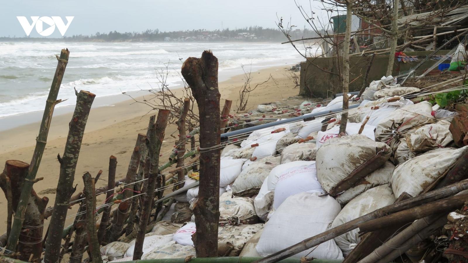 Biển xâm thực, dân ven biển Quảng Ngãi bất an