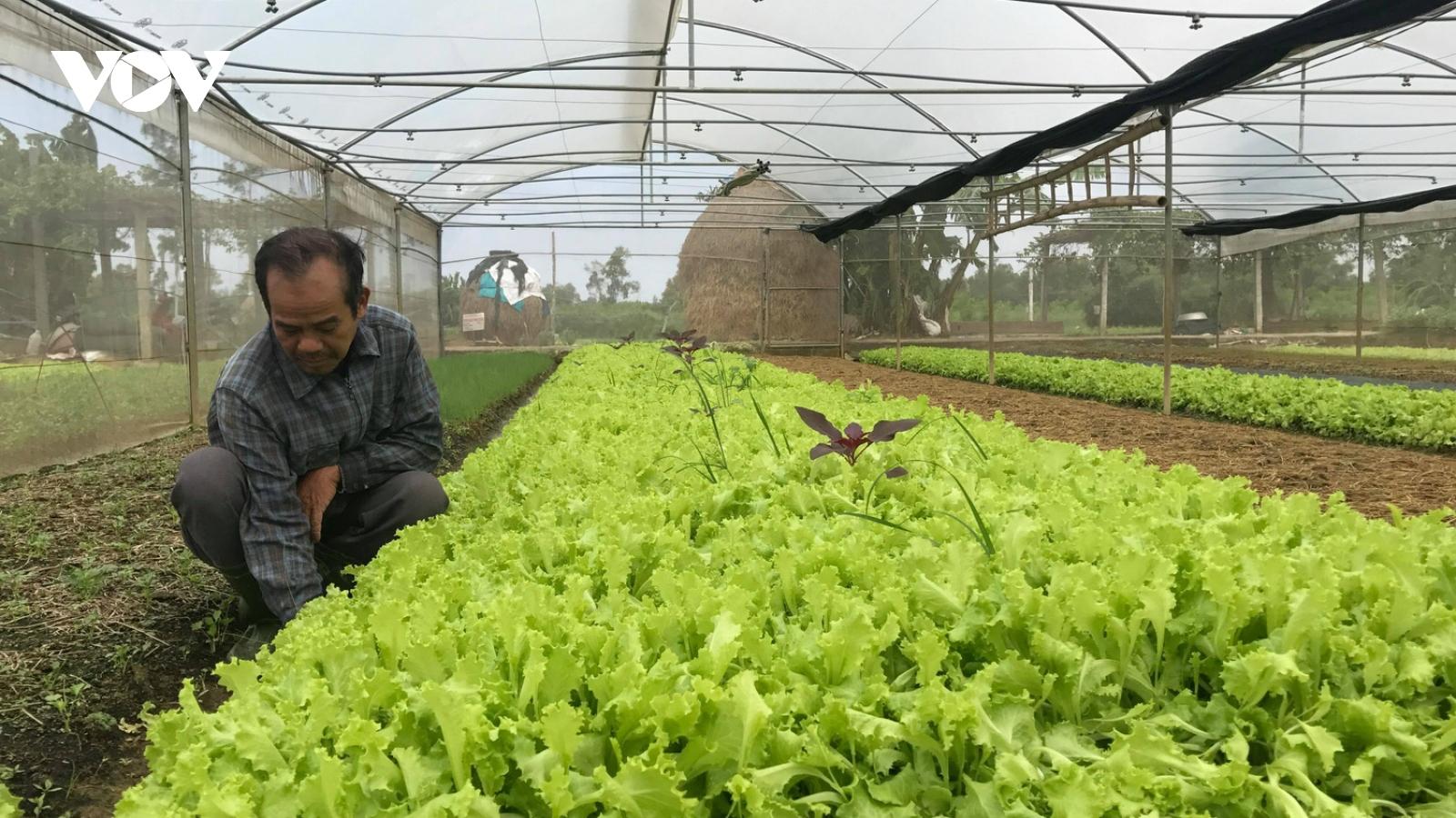 Người dân vùng lũ tìm giải pháp sản xuất nông nghiệp thích ứng với thiên tai