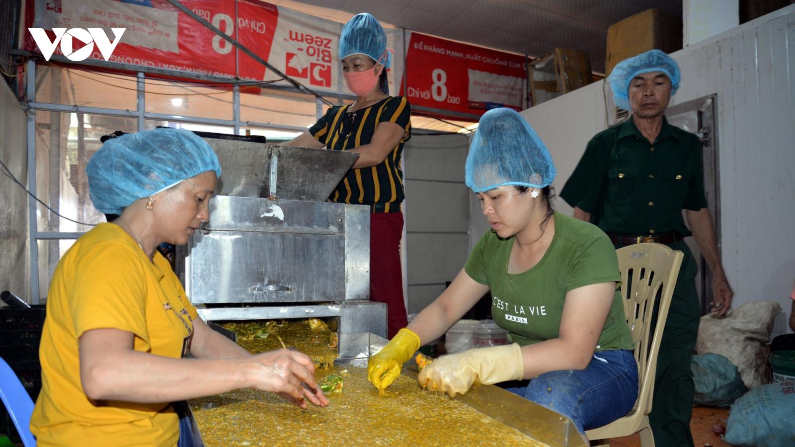 Kinh tế hợp tác xã: Vốn thấp, năng lực yếu