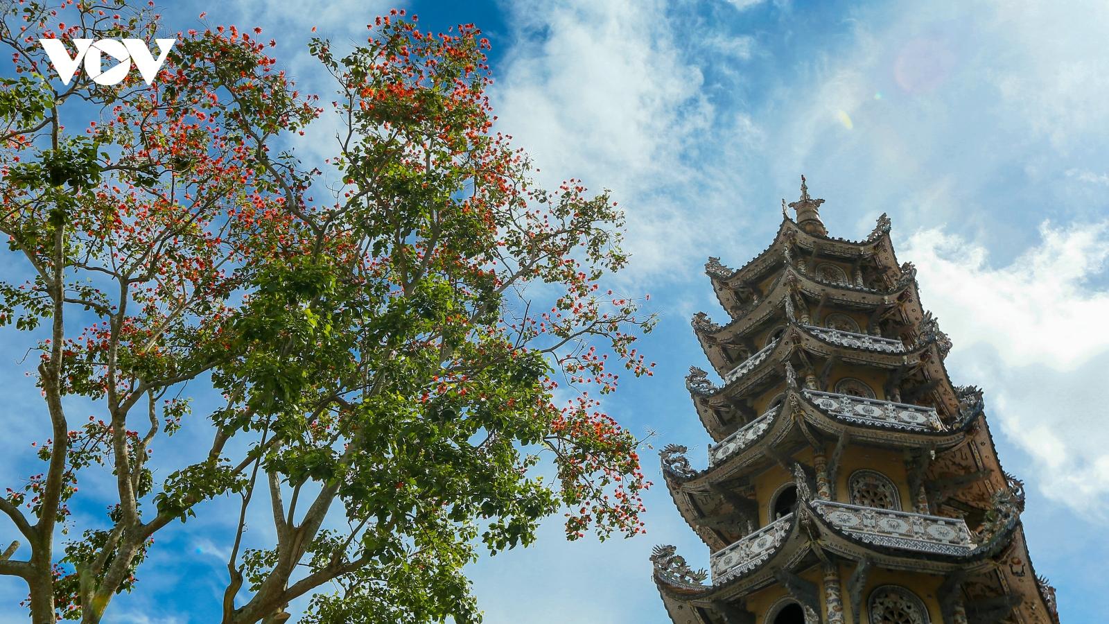 """Ngôi chùa bằng """"ve chai"""" có một không hai tại Việt Nam"""