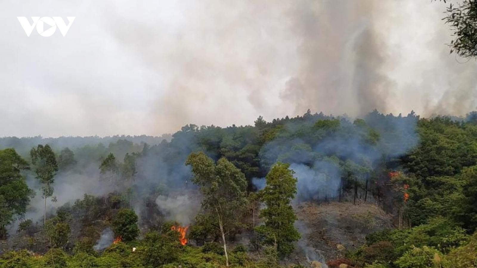 Hàng trăm người thức xuyên đêm dập cháy rừng tại Hạ Long